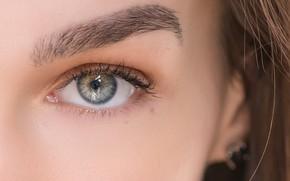 Картинка eye, look, eyebrows