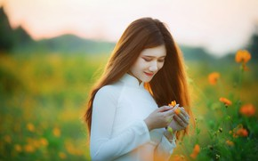 Картинка поле, лето, девушка, цветы, природа, поза, руки, макияж, луг, шатенка, азиатка, оранжевые, белое платье, длинноволосая, …