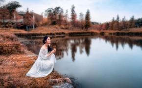 Картинка осень, лес, деревья, природа, поза, озеро, модель, портрет, макияж, платье, брюнетка, прическа, азиатка, сидит, в …