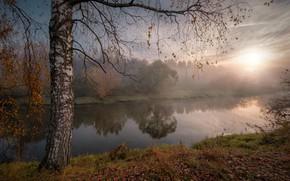 Картинка осень, солнце, лучи, пейзаж, природа, туман, река, дерево, утро, берёза, Андрей Чиж