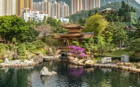 Картинка пруд, парк, камни, здания, дома, Гонконг, Китай, пагода, высотки, павильон