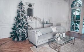 Картинка украшения, шары, елка, Новый Год, Рождество, подарки, Christmas, balls, design, New Year, gift, room, interior, …