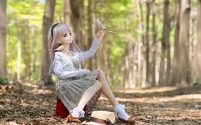 Картинка лес, игрушка, кукла, птички