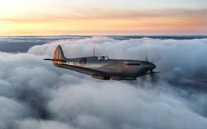 Картинка Небо, Облака, Истребитель, Spitfire, RAF, Вторая Мировая Война, Supermarine Seafire, Spitfire PR.Mk XI