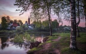 Картинка деревья, пейзаж, природа, весна, утро, деревня, берёзы, речушка