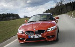 Картинка растительность, BMW, родстер, вид спереди, 2013, E89, BMW Z4, Z4, sDrive35is