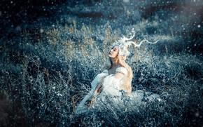Картинка трава, девушка, свет, украшения, природа, лицо, поза, стиль, поляна, руки, фея, блондинка, костюм, наряд, рога, …