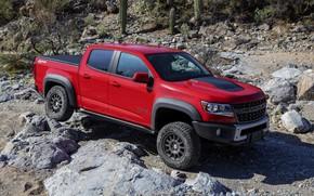 Картинка ветки, красный, камни, Chevrolet, пикап, Colorado, 2019, ZR2 Bison