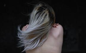 Картинка девушка, волосы, спина, Сергей Папиженко