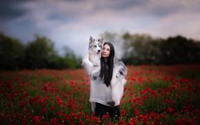 Картинка девушка, цветы, собака