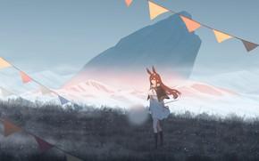 Картинка девушка, горы, природа, одуванчик, кролик, флажки, ушки