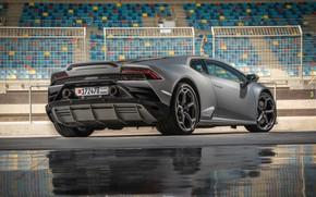 Картинка Lamborghini, суперкар, вид сзади, Evo, Huracan, 2019, Lamborghini Huracan Evo