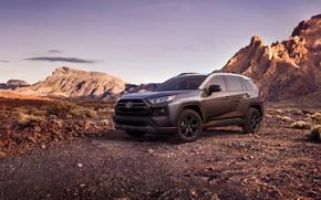 Картинка машина, горы, Toyota, кроссовер, TRD, Off Road, RAV4, USA version