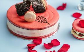 Картинка лепестки, торт, десерт