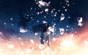 Картинка небо, капли, закат, фэнтези, девочка