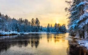 Картинка зима, иней, лес, небо, солнце, свет, снег, желтый, озеро, пруд, отражение, голубой, лёд, вечер, утро, …