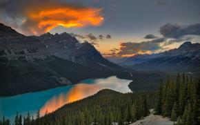 Картинка лес, горы, Канада, Альберта, водоем