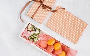 Картинка цветы, подарок, flowers, пирожные, gift, macaroon, french, macaron, макаруны