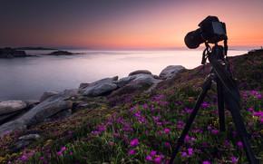 Картинка море, небо, закат, цветы, камни, рассвет, фотосъемка, берег, фотоаппарат, розовые, Испания, фотокамера, тренога