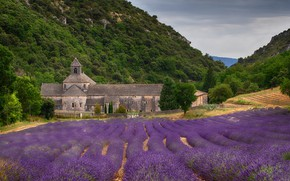Картинка зелень, поле, лето, небо, деревья, цветы, горы, природа, замок, холмы, склоны, Франция, архитектура, много, ряды, …