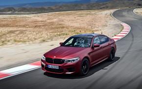 Картинка скорость, BMW, 2017, M5, F90, M5 First Edition