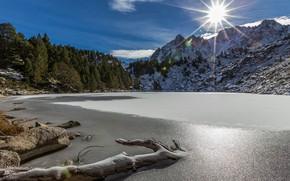 Картинка лес, горы, озеро, Андорра, Andorra, Пиренеи, Moreno Lake, Estany Moreno, Encamp, Озеро Морено, Энкам, Pyrenees …