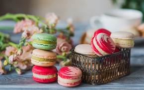 Картинка colorful, печенье, macarons