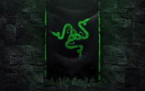Картинка темный фон, игра, логотип, технология, Razer, стенка