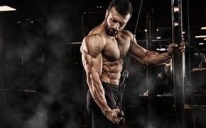 Картинка взгляд, поза, фитнес, muscle, мышцы, пресс, атлет, тренажеры, бицепс, тренажерный зал, fitness, gym, бодибилдер, training, …