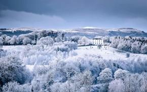 Картинка зима, снег, дом, парк, Северная Ирландия, Белфаст, Barnett Demesne Park