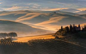 Картинка осень, деревья, горы, природа, туман, дом, холмы, поля, утро, Италия, особняк, луга, рельеф, посадки, кипарисы, ...