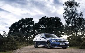 Картинка деревья, BMW, 3-series, универсал, 320d, 3er, 2020, UK version, G21, xDrive Touring