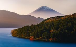 Картинка лес, озеро, гора, вулкан, Япония, Фудзи, Japan, Mount Fuji, тории, Фудзияма, Kanagawa, Канагава, Hakone, Хаконе, …