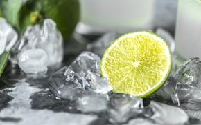 Картинка Closeup, Beverage, Citrus