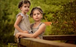 Картинка лето, природа, дети, девочки, Анастасия Мазай (Донская)