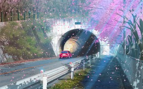 Картинка дорога, авто, тоннель, цветение