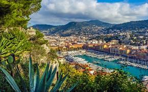 Обои здания, Ницца, French Riviera, Nice, яхты, бухта, порт, Лазурный берег, панорама, дома, France, Франция, горы, ...