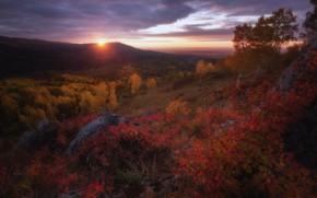 Картинка осень, лес, небо, яркие краски, солнце, облака, пейзаж, закат, горы, тучи, природа, камни, холмы, листва, …
