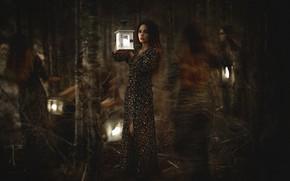 Картинка лес, взгляд, девушка, деревья, ветки, темнота, девушки, стволы, размытие, мистика, платье, фонари, ведьма, полумрак, призраки, …