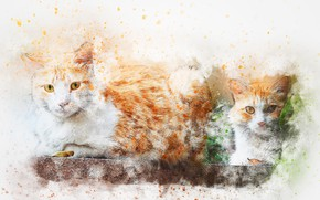 Картинка кошки, фон, акварель, art