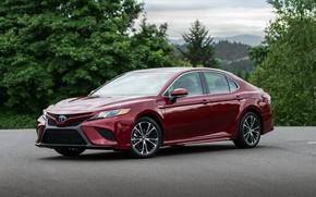 Картинка красный, Toyota, седан, 2018, Camry, четырёхдверный, SE Hybrid