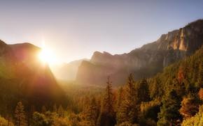 Картинка осень, небо, лучи, свет, горы, скалы, рассвет, утро, ели, США, Йосемити, Йосемитский национальный парк, солнцелес