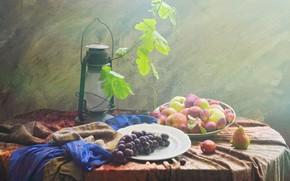 Картинка листья, яблоки, виноград, фрукты, натюрморт, сливы, груши, предметы, лоза, композиция, керосиновая лампа