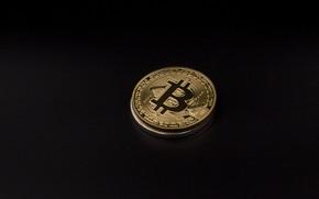 Картинка gold, black, coin, bitcoin, биткоин, btc