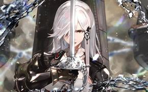 Картинка девушка, меч, рыцарь