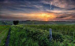 Обои дорога, поле, лето, закат, забор