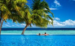 Картинка море, пальмы, бассейн