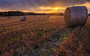 Картинка поле, солнце, пейзаж, природа, красота, сено, тюк