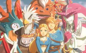 Картинка Link, Zelda, The Legend of Zelda: Breath of the Wild, Revali, Paya, Urbosa, Mipha, Purah, …