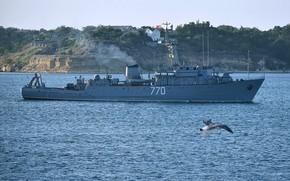 Картинка морской, тральщик, севастополь, валентин пикуль